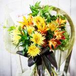 6月 梅雨の合間に 花の撮影